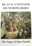 Black-Chinned Hummingbird: The Saga of One Family DVD