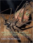 Breeding the World's Largest Living Arachnid