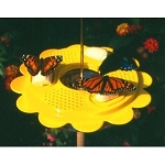 Butterfly Feeder ~ 12 Ounce