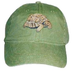 Tortoise Embroidered Cap