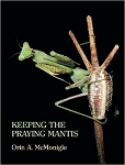 Keeping The Praying Mantis