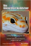 The Leopard Gecko Advisor