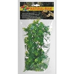 Zoo Med Medium Natural Plants ~ 10 Varieties Available