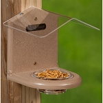 Bluebird, Mealworm Feeders