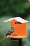 Recycled Bird Feeders & Houses