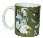 Soaring Raptors ~ Hawk Eagle 11 OZ. Ceramic Coffee Mug