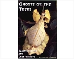 Ghosts of the Trees: Walking Sticks and Leaf Insects