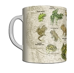 Frogs of North America 11 OZ. Ceramic Coffee Mug