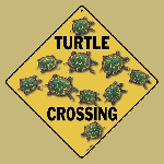 Turtle Crossing Sign