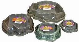 Reptile Dishes
