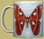 Atlas Moth 11 OZ. Ceramic Coffee Mug