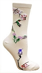 Hummingbird Socks