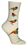 Painted Bunting Socks