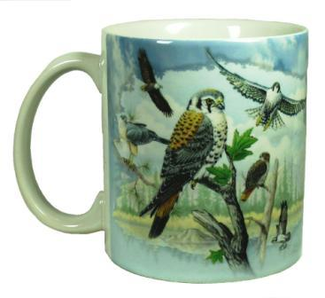 Raptors Of North America Coffee Mug With Hawks And Eagles Free Shipping Dishwasher And Microwave Safe Buy To Make Your Morning Great