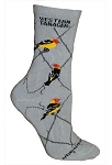 Western Tanager Socks