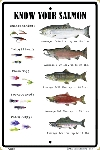 Know Your Salmon Sign