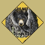 Bear Do Not Disturb Sign