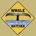 Whale Watcher Sign