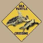Sea Turtle Crossing Sign