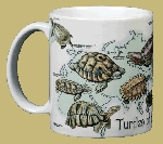 Turtles of the World 11 OZ. Ceramic Coffee Mug