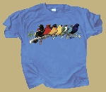 Songbird Spectrum T shirt
