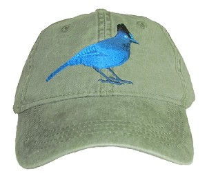 Steller's Jay Embroidered Cap