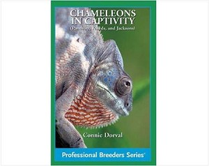 Chameleons in Captivity (Professional Breeders Series)
