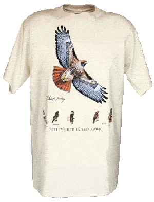 Sibley's Red-tailed Hawk T-shirt