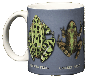 Frog Circle 11 OZ. Ceramic Coffee Mug
